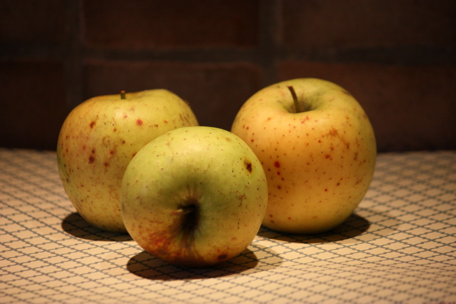 Epler fra egen hage